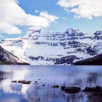 Alberta - Fujifilm Provia 100F [120] & Hasselblad 500CM